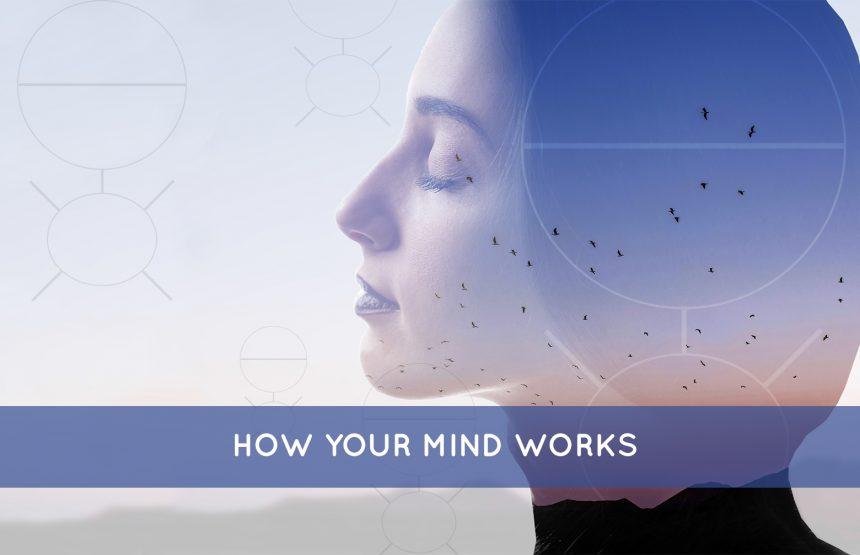 आपका दिमाग कैसे काम करता है ?